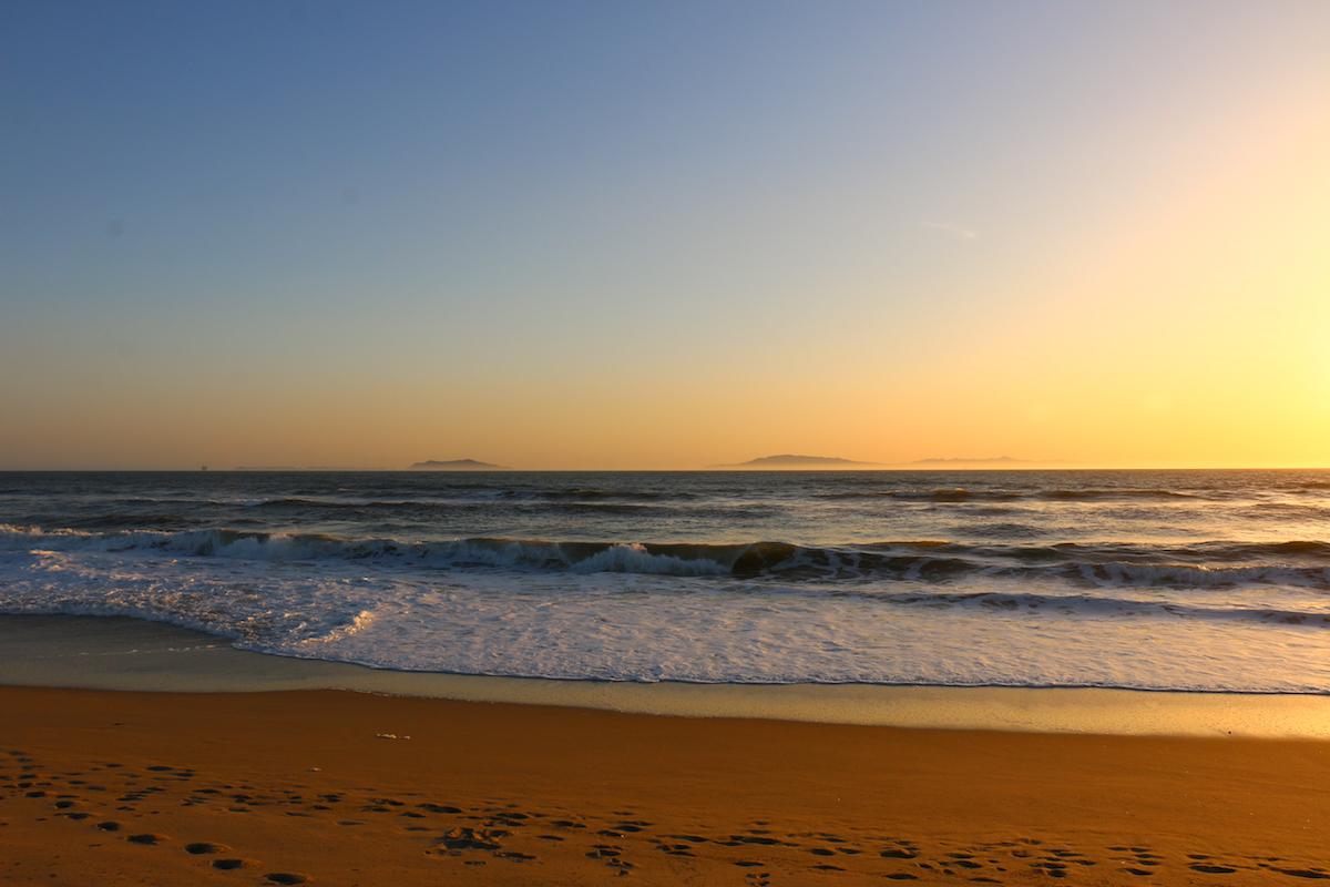 Long Beach Polystyrene Ban + Craig Update + AB 1782 + more!