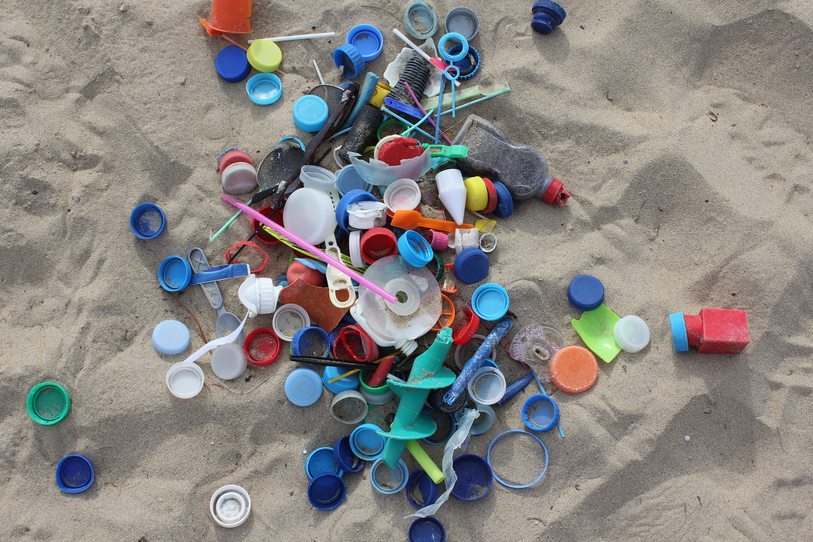 Important Plastic Pollution Bills Moving in Sacramento: The Ocean Needs You!