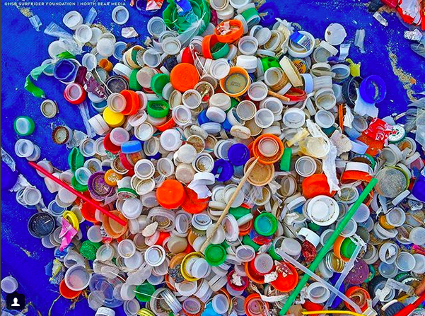 Calling All Plastic Pollution Warriors!