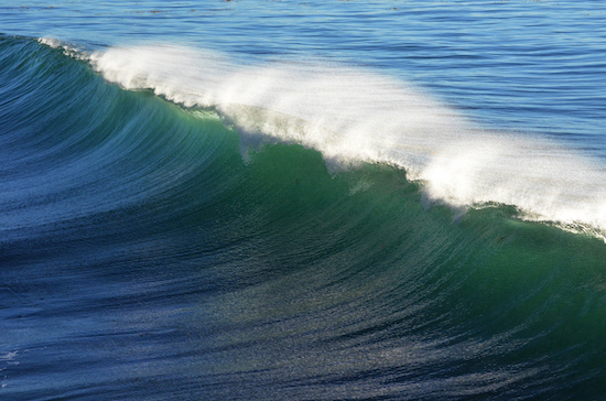 Weekly Roundup – Plastic pollution victories, new pod, Ocean Fathoms, access in Pacifica